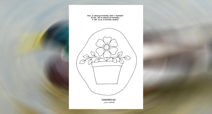 Pracovný list - kvety