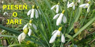 Pieseň o jari