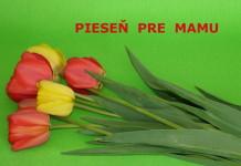 Pieseň pre mamu na Deň matiek