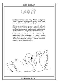 Labuť - encyklopédia zvierat