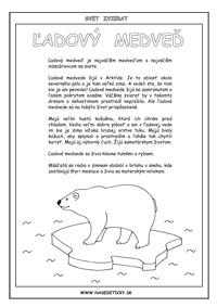Ľadový medveď - encyklopédia zvierat