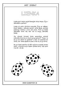 Lienka - encyklopédia zvierat