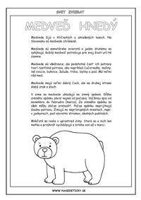 Medveď - encyklopédia zvierat