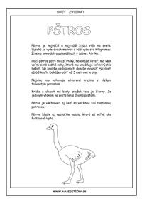 Pštros - encyklopédia zvierat
