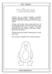 Tučniak - encyklopédia zvierat