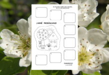 Jar - pracovný list pre deti