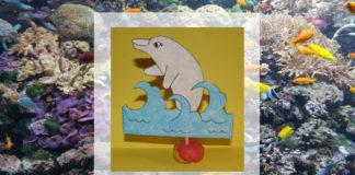 Delfín - prázdninové aktivity pre deti