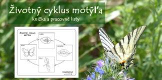 Životný cyklus motýľa - knižka a pracovné listy pre deti