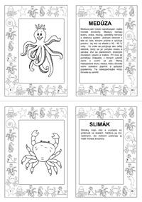 Knižka - morské zvieratká