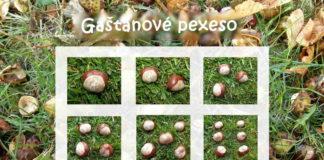 Gaštanové pexeso - kartičky na počítanie do 10