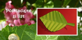 List origami