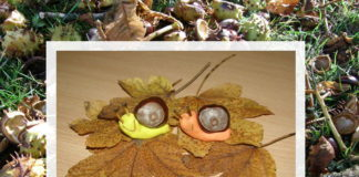 Slimák z gaštanov - tvoríme na jeseň s deťmi