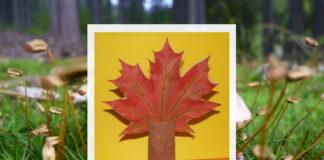 Strom - jesenné aktivity pre deti