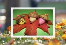 ježko - tvoríme s deťmi na jeseň