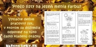 Prečo listy na jeseň menia farbu