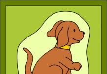 Psík - obrázok, menovky, listový papier, obálka a medaile so psíkom