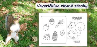 Veverička - pracovný list pre deti